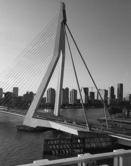 Rotterdam hospitality